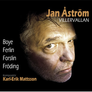 Janne Åström, I livets villervalla på Spotify
