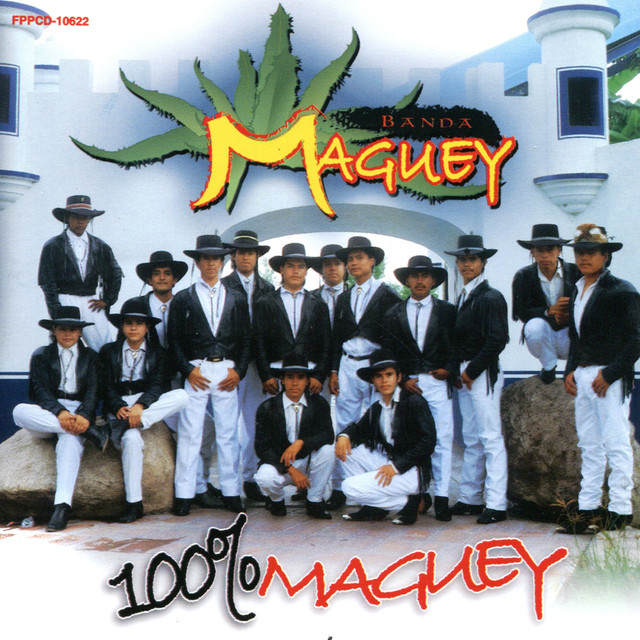 100% Maguey