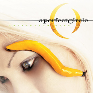 Thirteenth Step - A Perfect Circle