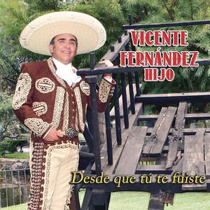 Vicente Fernández Hijo