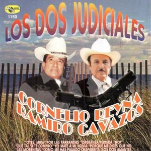 Los Dos Judiciales