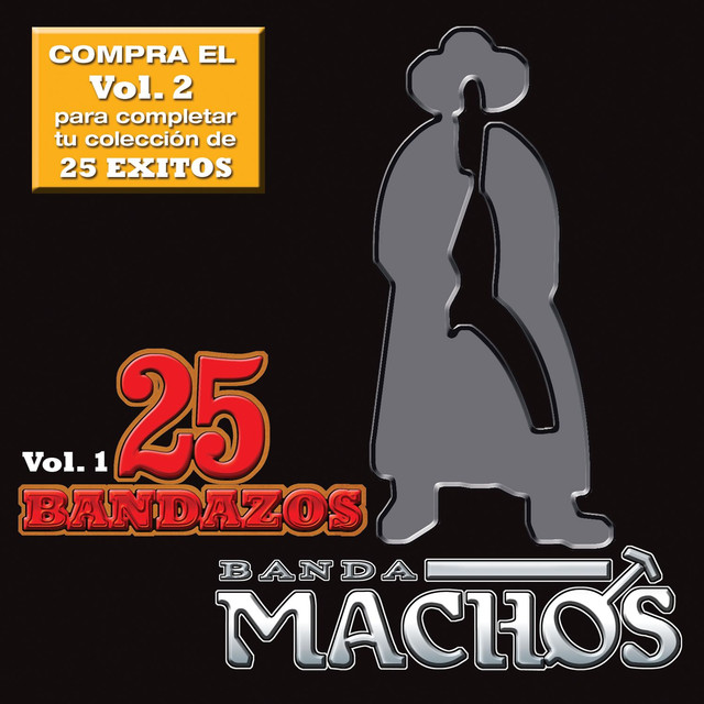 25 Bandazos de Machos (Vol. 1) [USA]