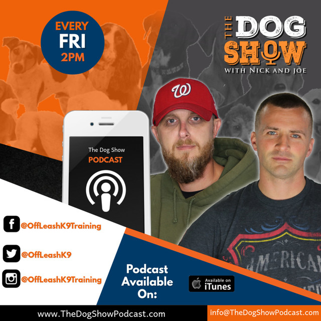 d9b38a5ff The Dog Show with Nick and Joe on Spotify