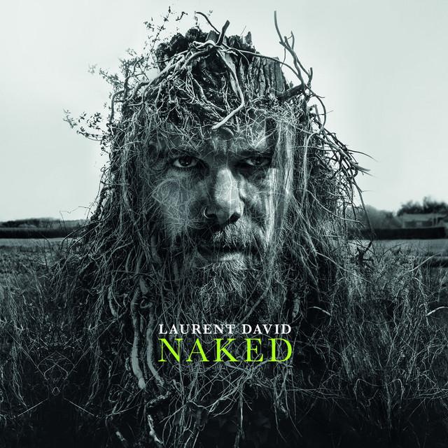 Image result for Laurent David - Naked