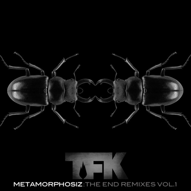 Metamorphosiz: The End Remixes, Vol. 1