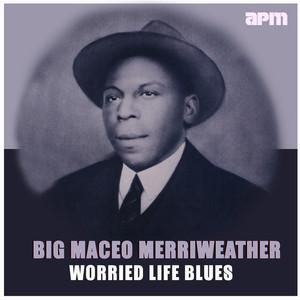 Worried Life Blues album