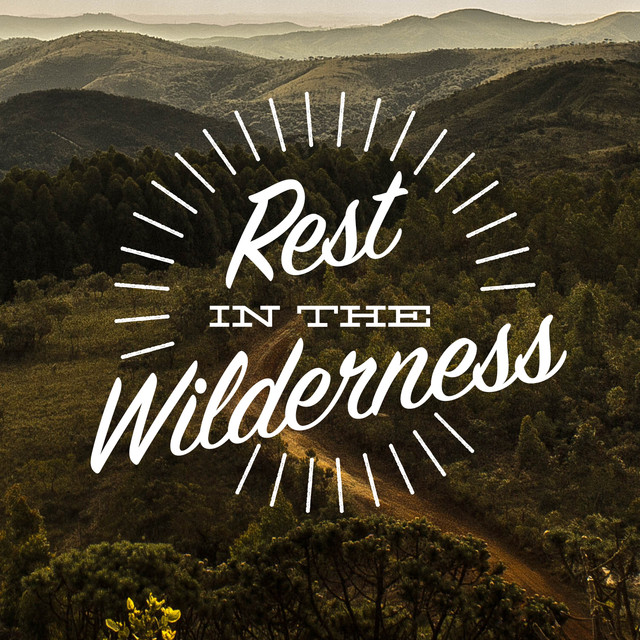 Rest in the Wilderness Albumcover