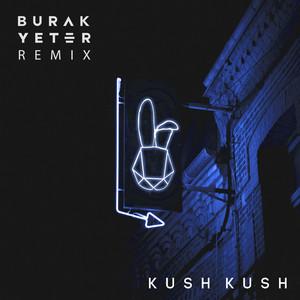 I'm Blue (Burak Yeter Remix) Albümü