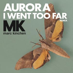 I Went Too Far (MK Remix)