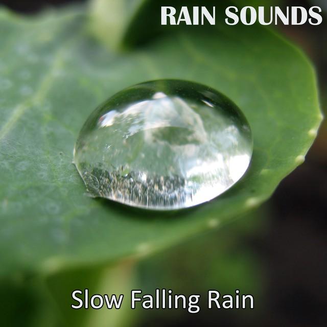 Slow Falling Rain Albumcover