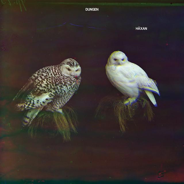Skivomslag för Dungen: Häxan