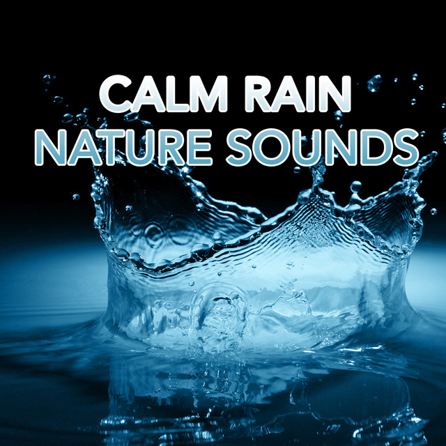 Album cover for Calm Rain Nature Sounds by Rain Sounds, Rain for Deep Sleep, Soothing Sounds