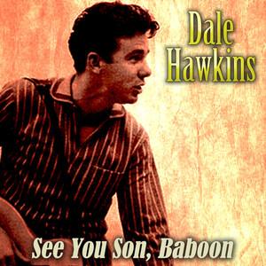 See You Soon, Baboon album