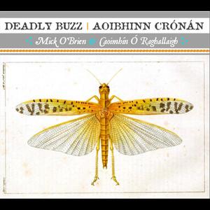 Caoimhín Ó Raghallaigh & Mick OBrien, The Dublin Lads, The Taproom, The Liffey Banks på Spotify