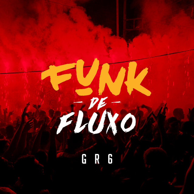 Album cover for Funk Fluxo by Various Artists