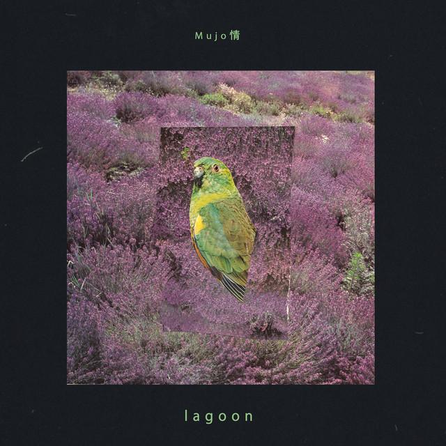 Album cover for Lagoon by Mujo