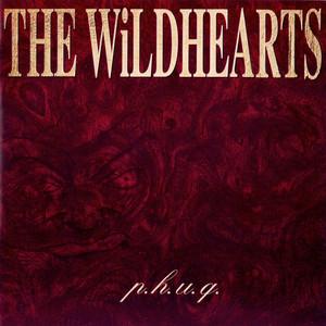 P.H.U.Q. (Extended Version) album