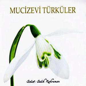 Mucizevi Türküler Albümü