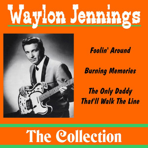 Waylon Jennings: The Collection Albümü