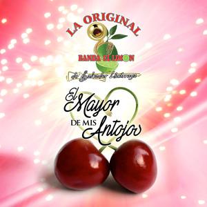 La Original Banda El Limón de Salvador Lizárraga, La Original Banda El Limón de Salvador Lizárraga Amor de los Pobres cover