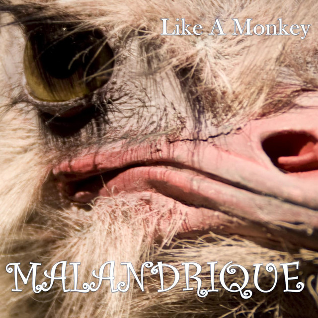 Album cover for Like a Monkey by Malandrique