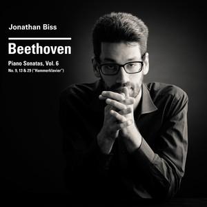"""Beethoven Piano Sonatas Nos. 9, 13 & 29 """"Hammerklavier"""", Vol. 6 Albümü"""