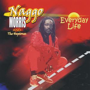 Everyday Life album