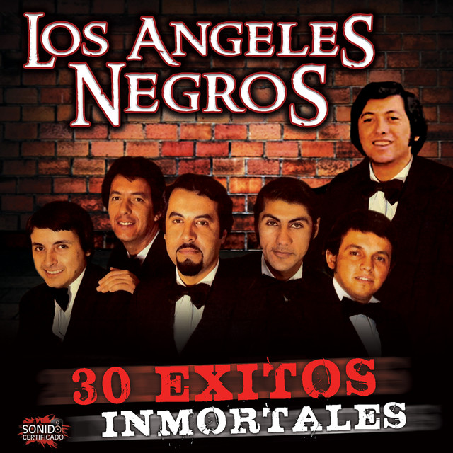 Album cover for 30 Exitos Inmortales by Los Angeles Negros