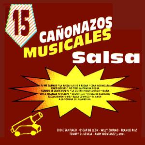 15 Canonazos Musicales Con Salsa