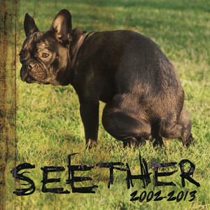 Seether Let Me Go cover