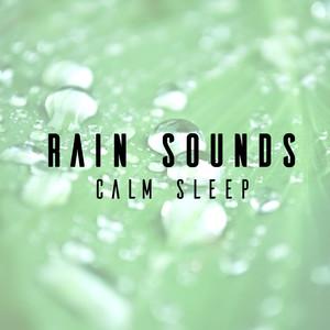 Rain Sounds: Calm Sleep Albumcover
