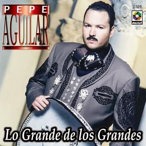Lo Grande De Los Grandes Albumcover