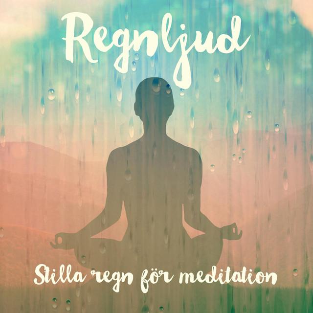 Album cover for Stilla regn för meditation by Regnljud