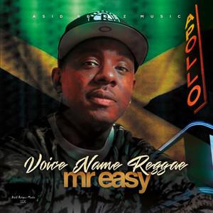 Voice Name Reggae album