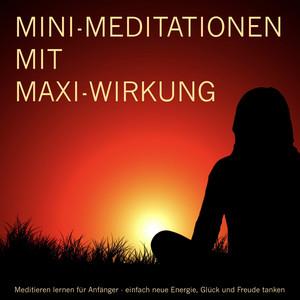 Mini-Meditationen mit MAXI-Wirkung (Meditieren für Anfänger) Audiobook