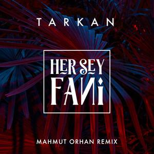 Her Şey Fani (Mahmut Orhan Remix) Albümü