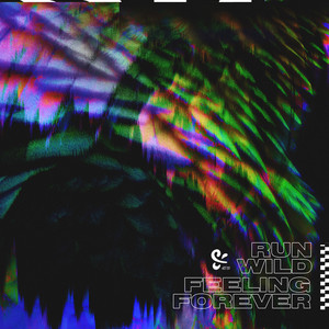 Run Wild / Feeling Forever album cover