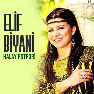 Halay Potpori Albümü