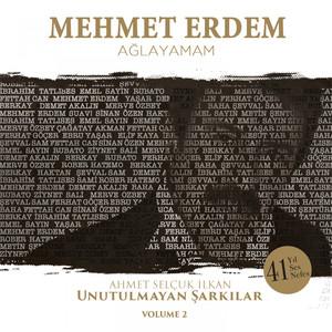 Ağlayamam (Ahmet Selçuk İlkan Unutulmayan Şarkılar, Vol. 2) Albümü