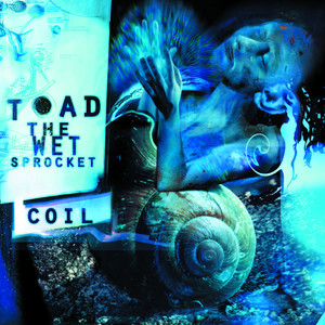 Toad the Wet Sprocket Crazy Life cover