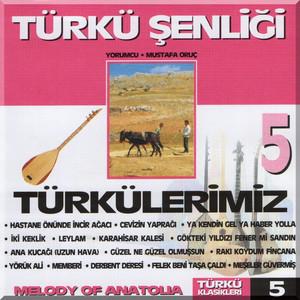 Türkü Şenliği, Vol. 5 Albümü