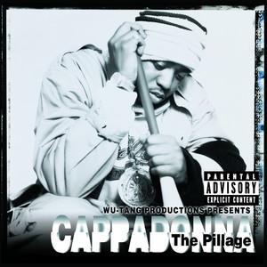 The Pillage album