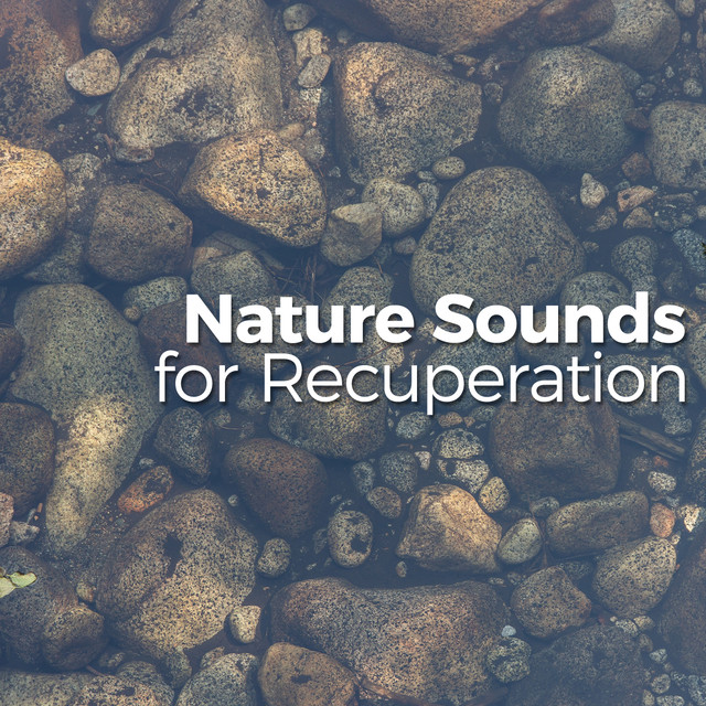 Nature Sounds for Recuperation
