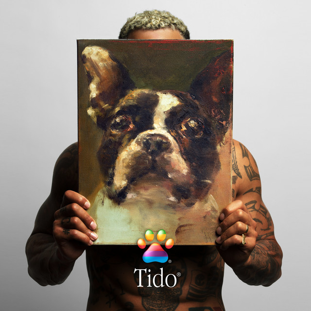 Album cover for Tido by Bizzey