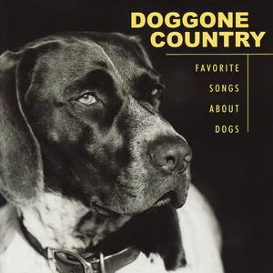 Doggone Country album
