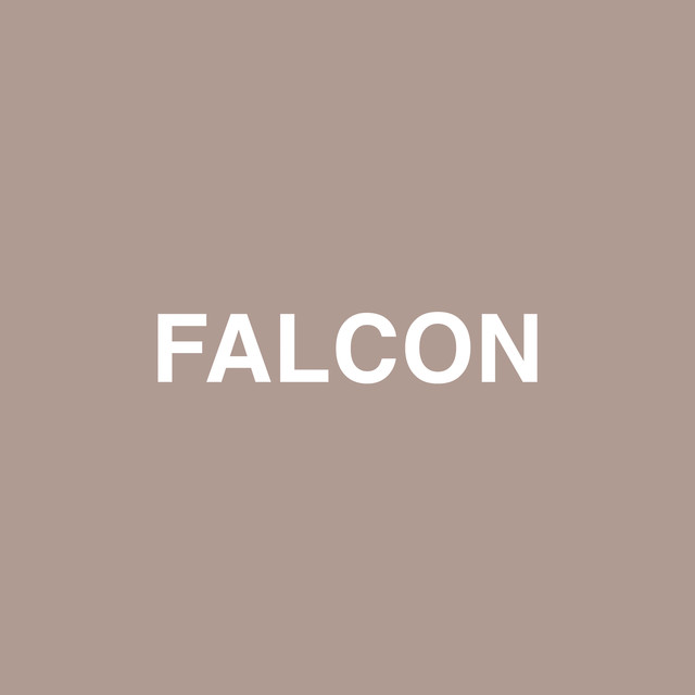 Falcon (feat. Raury)