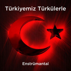 Türkiyemiz Türkülerle (Enstrümantal) Albümü