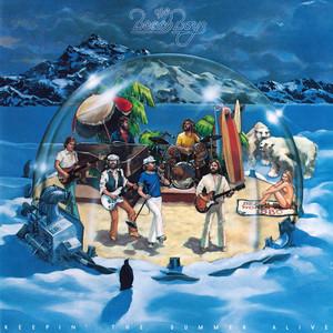 Keepin' the Summer Alive / The Beach Boys album