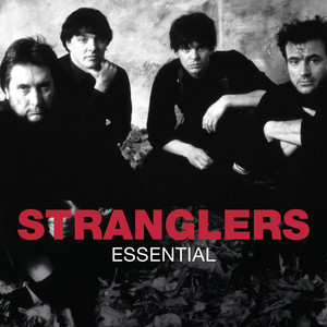 The Stranglers (Get a) Grip (on Yourself) (Grip '89 remix) cover
