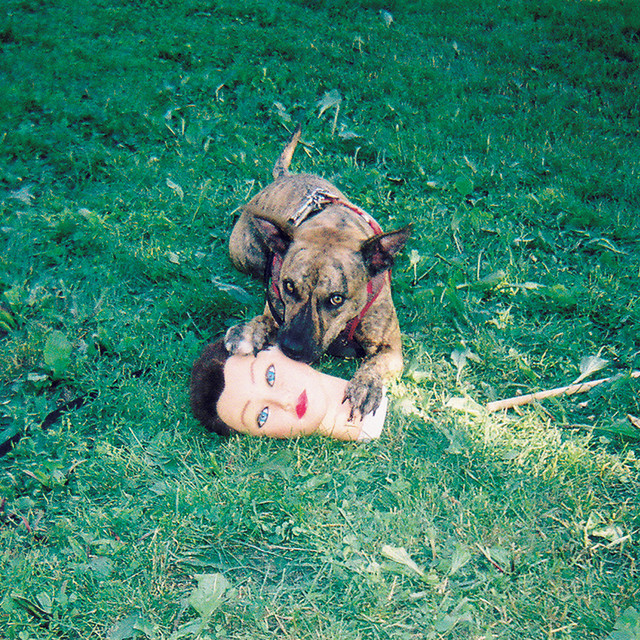 Album cover for Cody by Joyce Manor